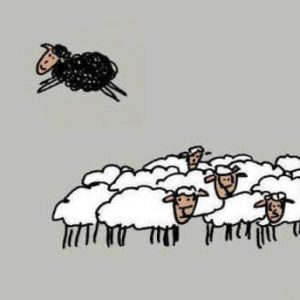 Você é uma ovelha negra?